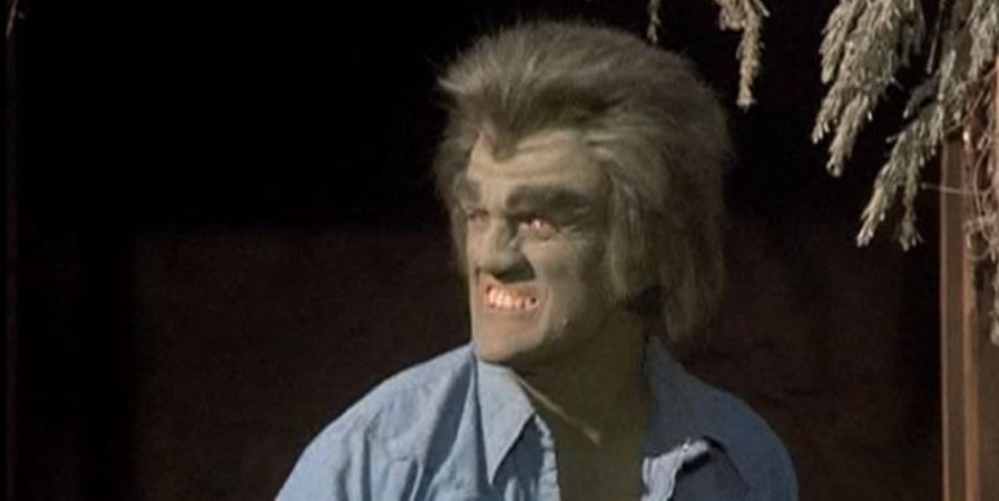 10 Best Episodes Of The Classic Incredible Hulk TV Series, According To IMDb