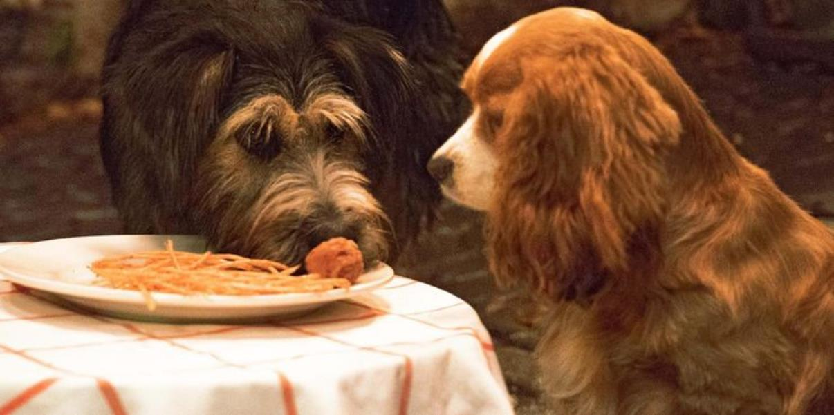 Lady & The Tramp 2019's Biggest Changes To The Original